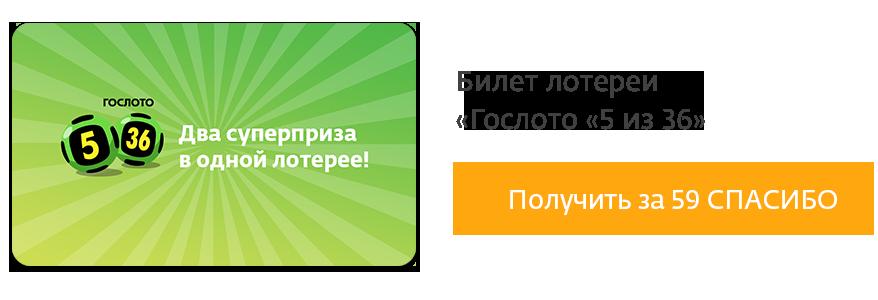 Столото личный кабинет: войти на официальный сайт по номеру телефона